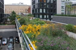 High Line-0