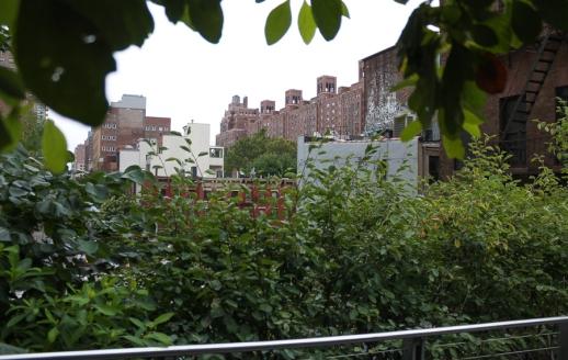 High Line-9