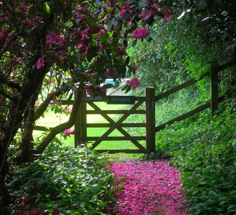 flower-path-pwm