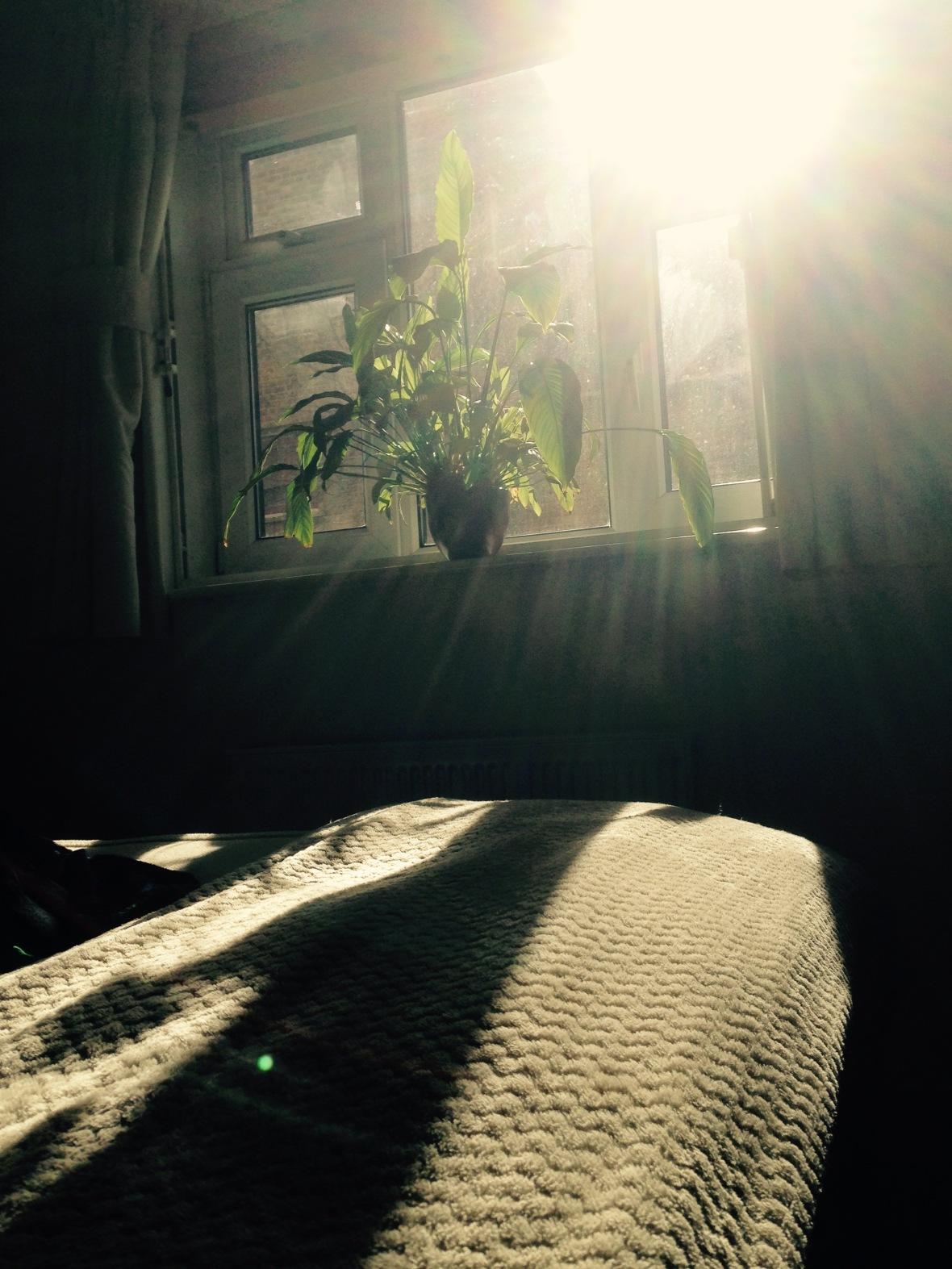 twentyseventeen_day55_sunrays